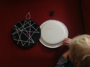 spiderweb1-karenwindness-blog