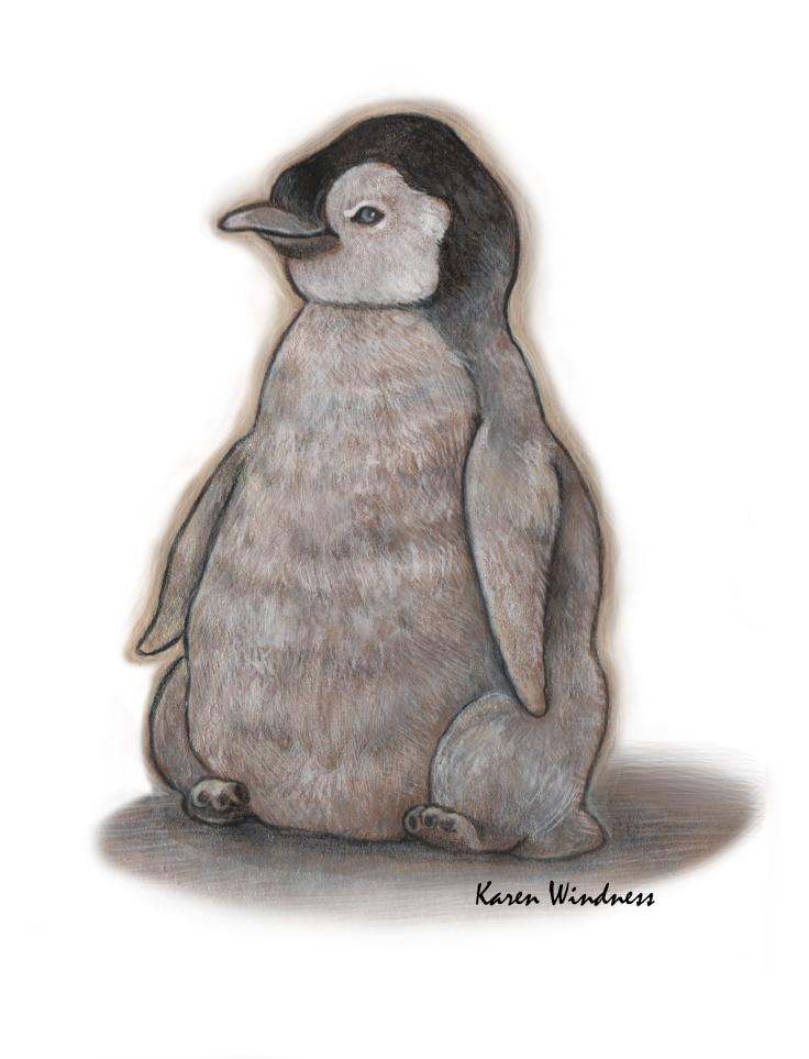 penguin-karenwindness