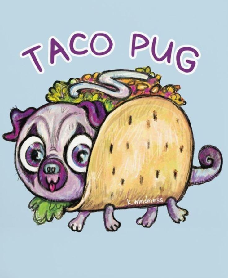 taco-pug-windness